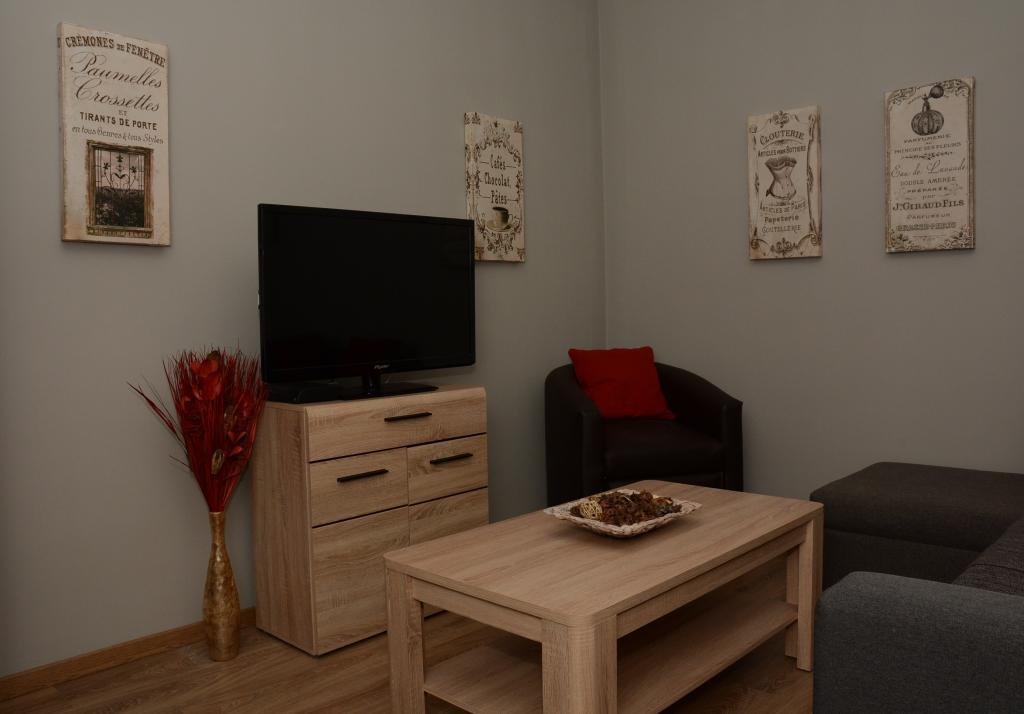 Living room Cluj serviced apartments Cluj Rumania hotel to rent daily