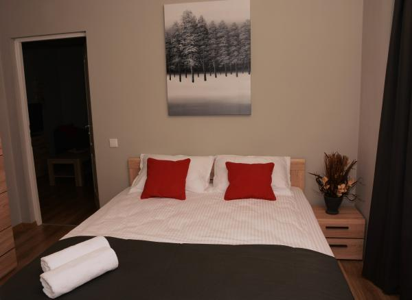 Booking.com red hotel Cluj appartamenti in affito centro citta cluj
